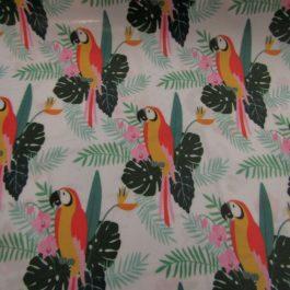 Tecido plastificado Papagaios